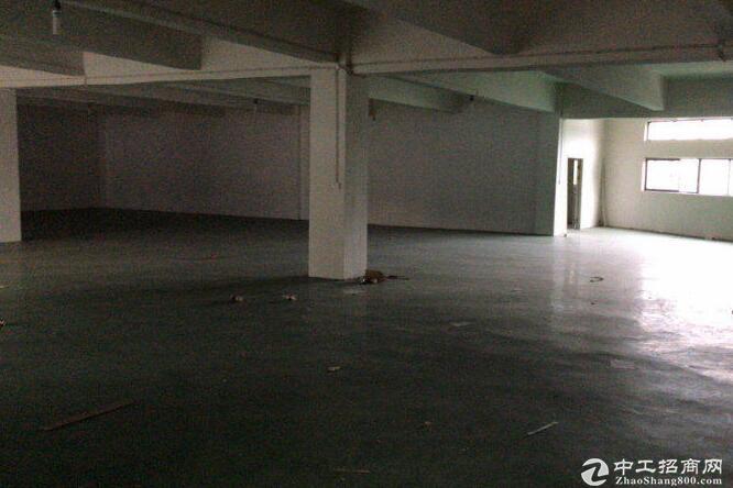 汉口北个人厂房仓库出租 带货梯招租 1000平方米