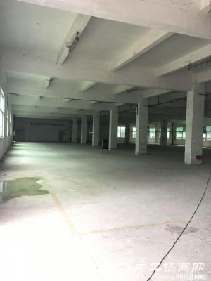 丹竹头地铁站 1200平一楼厂房 主干道边 可分租