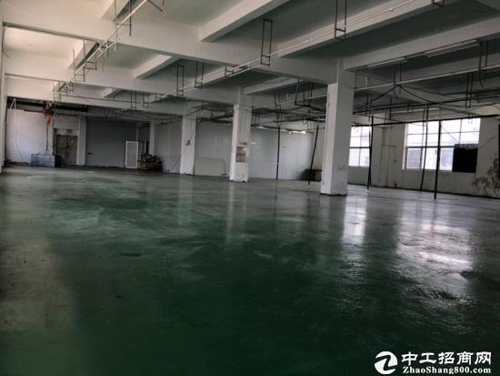 坪地独院标准厂房1-4层5400平带喷淋空地20