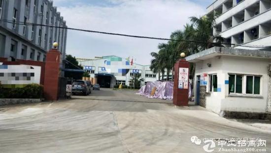 东莞茶山镇国有证厂房出售