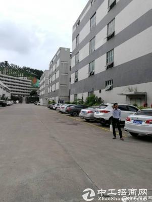 龙岗区横岗安良独门独院面积4215平米标准厂房招租