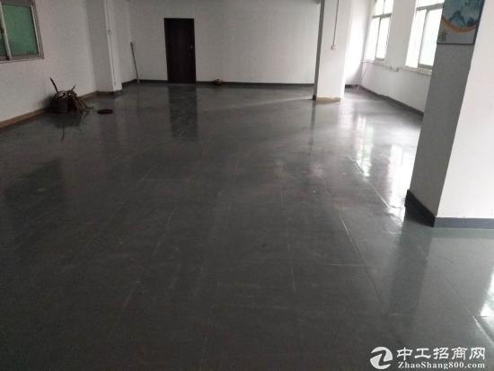 龙岗南联电商仓库厂房650平出租带装修可分租-图3