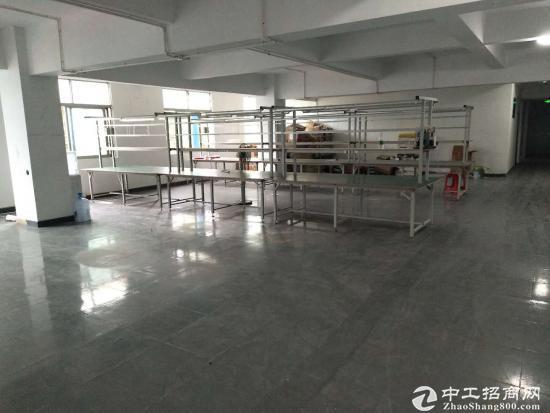 龙岗南联电商仓库厂房650平出租带装修可分租