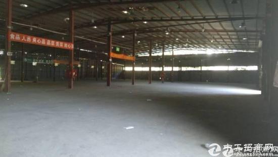 宝安石岩机荷高速口13000平米标准仓储仓库出租