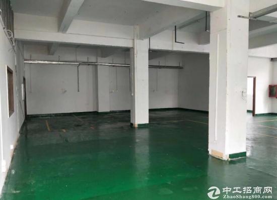 仓储产业园仓库出租,单层面积4300,可分租!