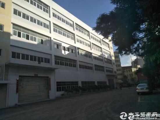 观澜龙澜快线旁新出楼上精装修厂房1450平出租可分租