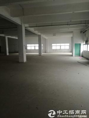 李朗工业区红本厂房 300 500 800 1600平