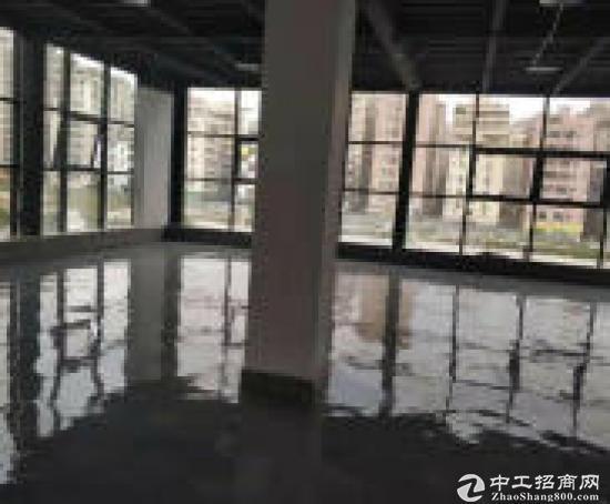 布吉一二楼厂房 850平方适合办公展厅