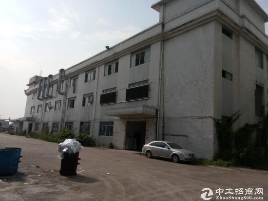 沙田镇大泥村新出二楼标准厂房面积1500平米主干道边上,易招工
