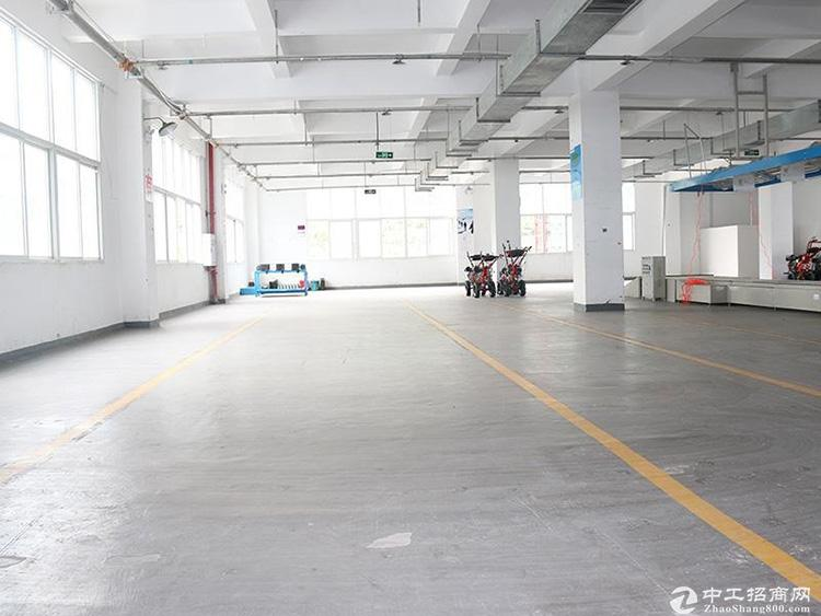 出售丹棱创新工业钢结构厂房 自定义建厂