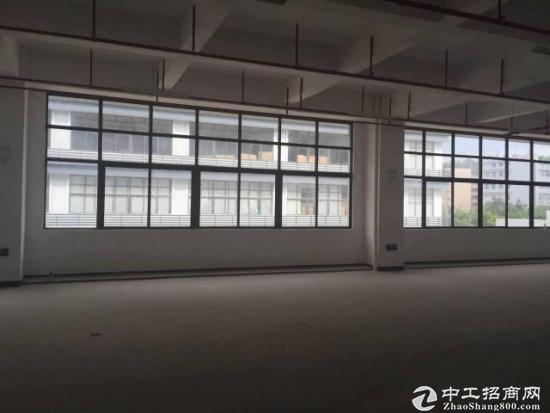 光明高新区红本独院7200、9000平方出租