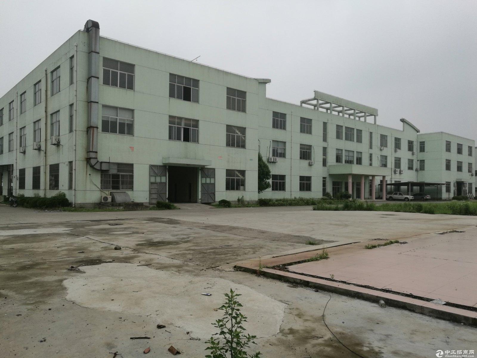 金山廊下工业区独院104板块8米绿证50年-图3