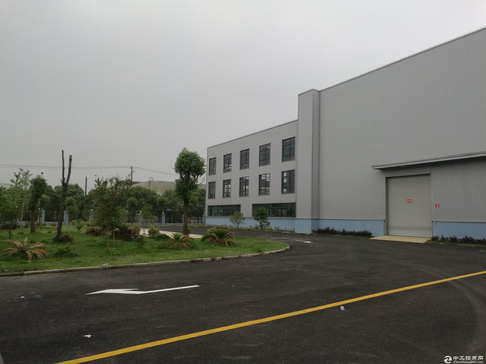 金山廊下工业区独院104板块8米绿证50年-图4