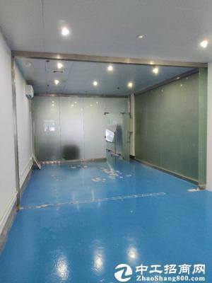 坪山新出红本厂房24000平米招租可分租