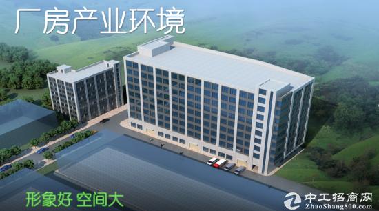 大岭山新建厂房分层出售