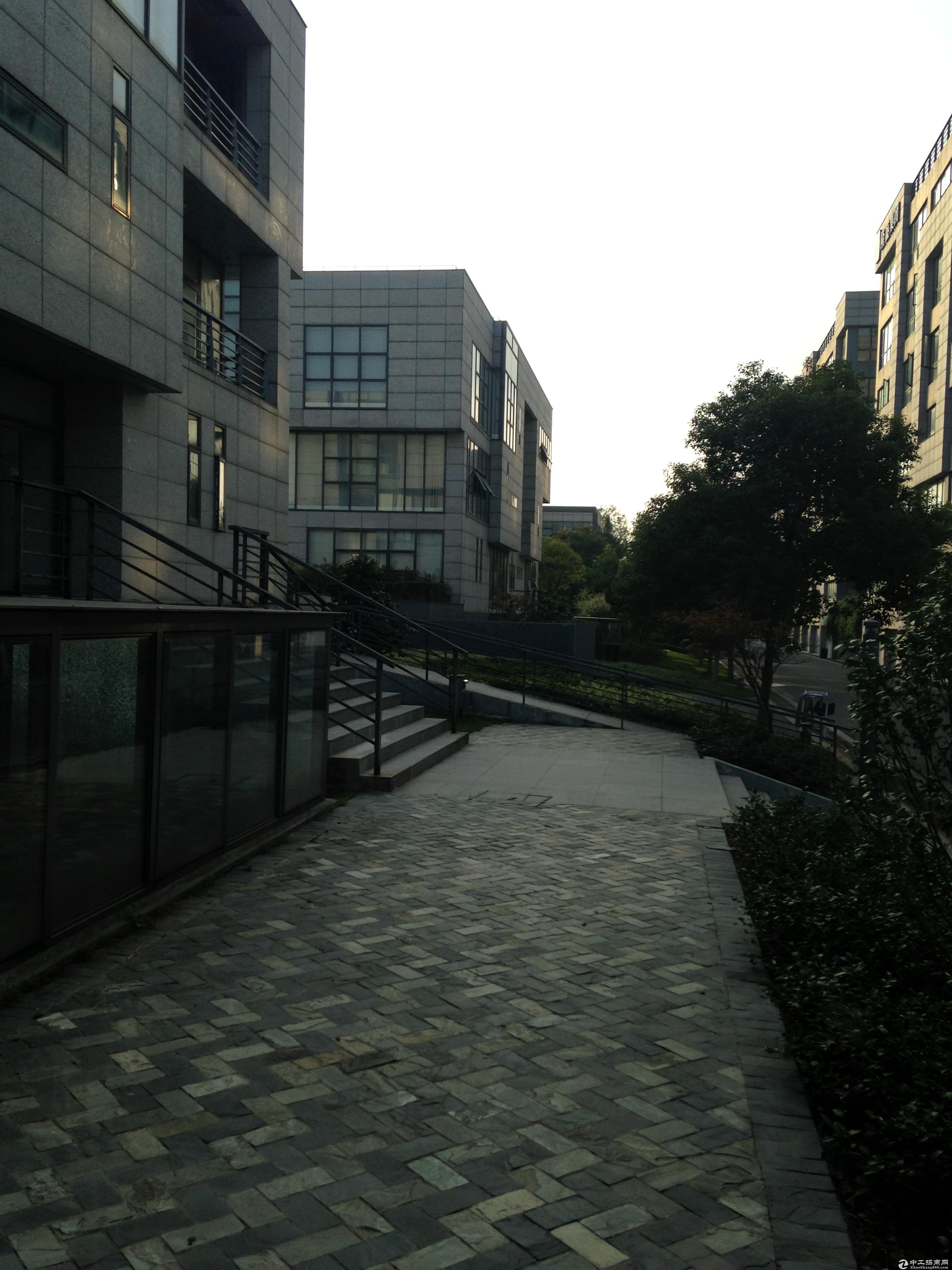浦东王桥路999号独栋四本产证三加一绿证50年精装修