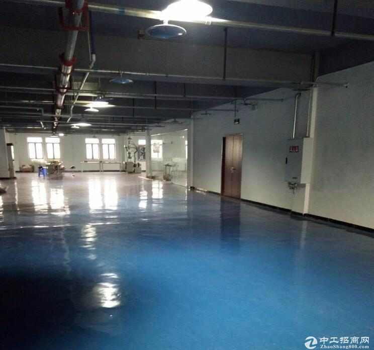 渝北 食品城2000平食品厂房 水电气到场