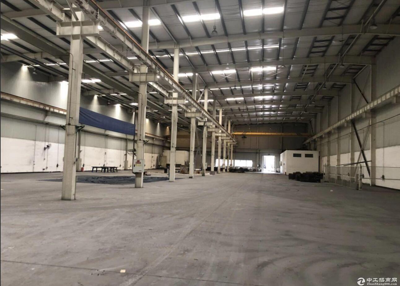 渝北农业园8000平米单层厂房仓库可分租