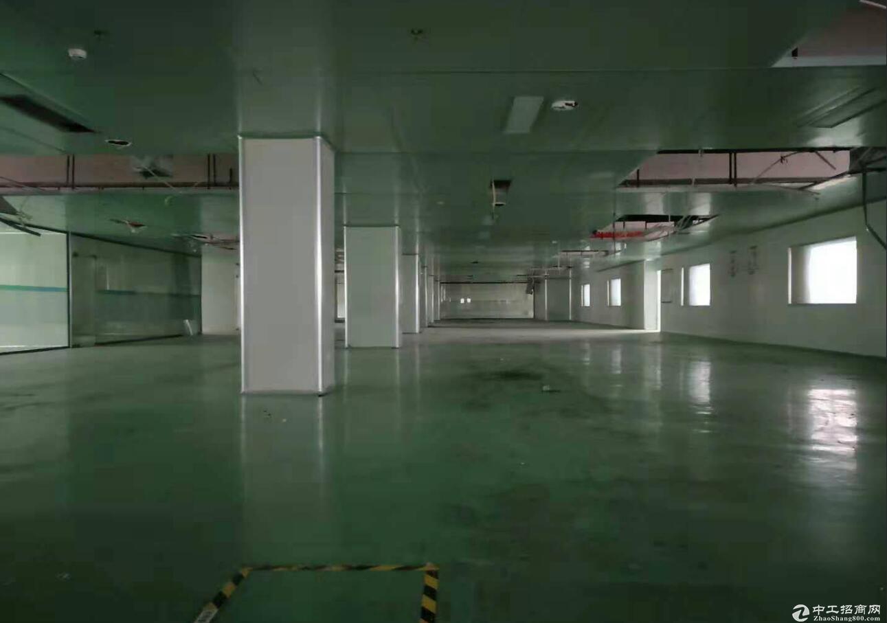 空港工业园独栋精装修电子厂房出租