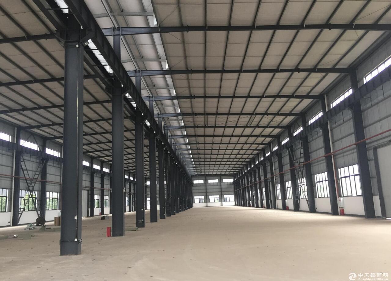 龙兴标准钢结构厂房10000平出租 可分租