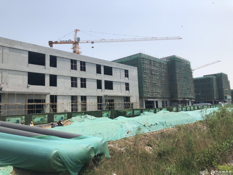 临潼渭北管委会旁 厂房出售 企业独栋 2100平首层层高7.2米