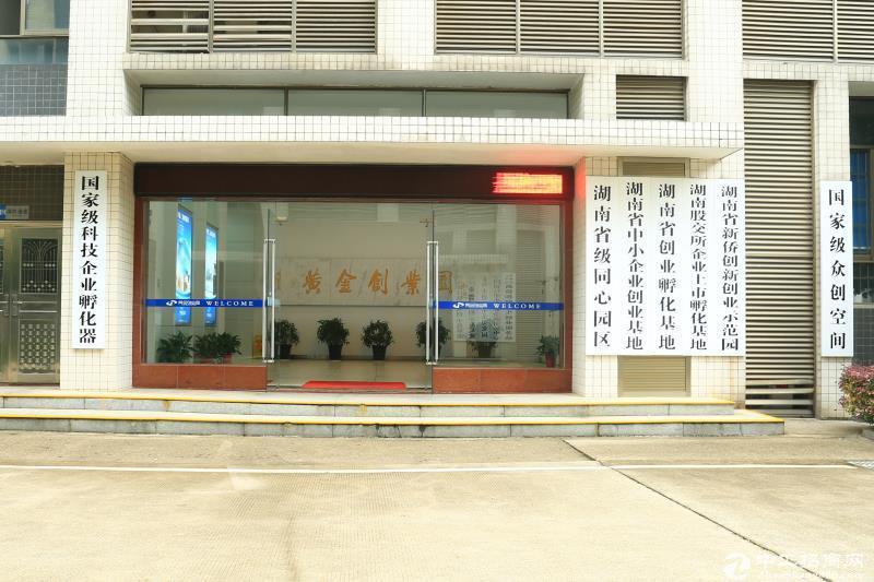 望城黄金创业园147平米办公厂房出租