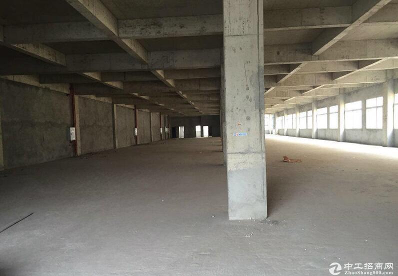 全新标准厂房出售:1000-3000平米。