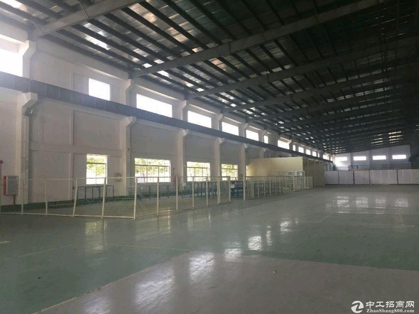 江门江海3900方全新钢结构厂房