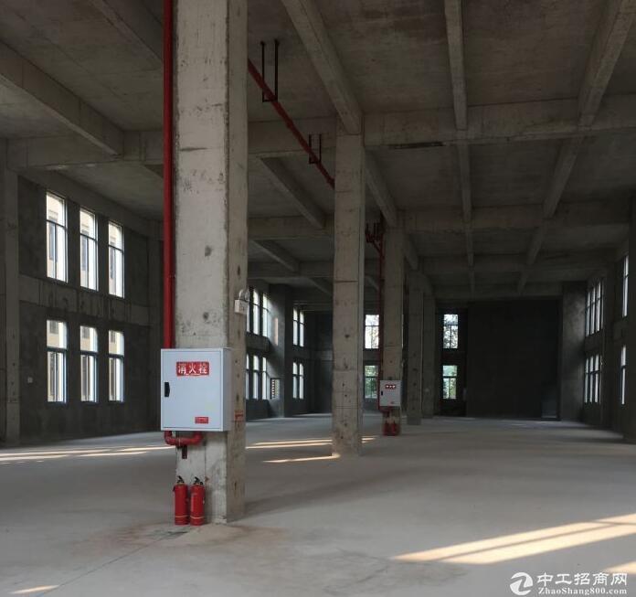 两江新区单层钢构厂房+两层独栋厂房