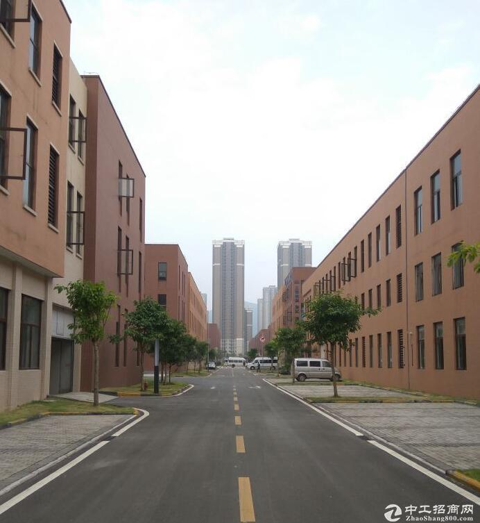 两江高新园独栋框架和轻钢厂房租售