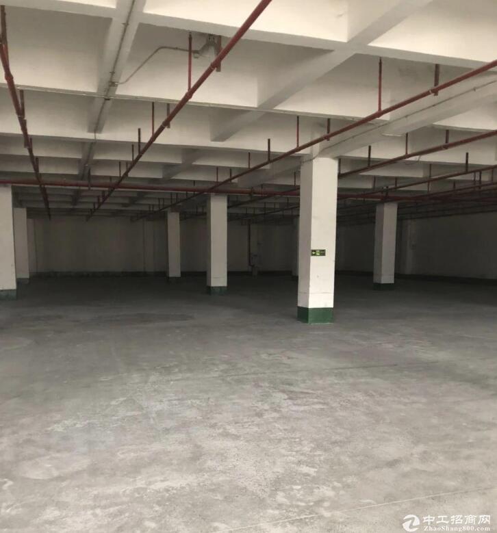 石港大道1100平米丙二类库房厂房出租