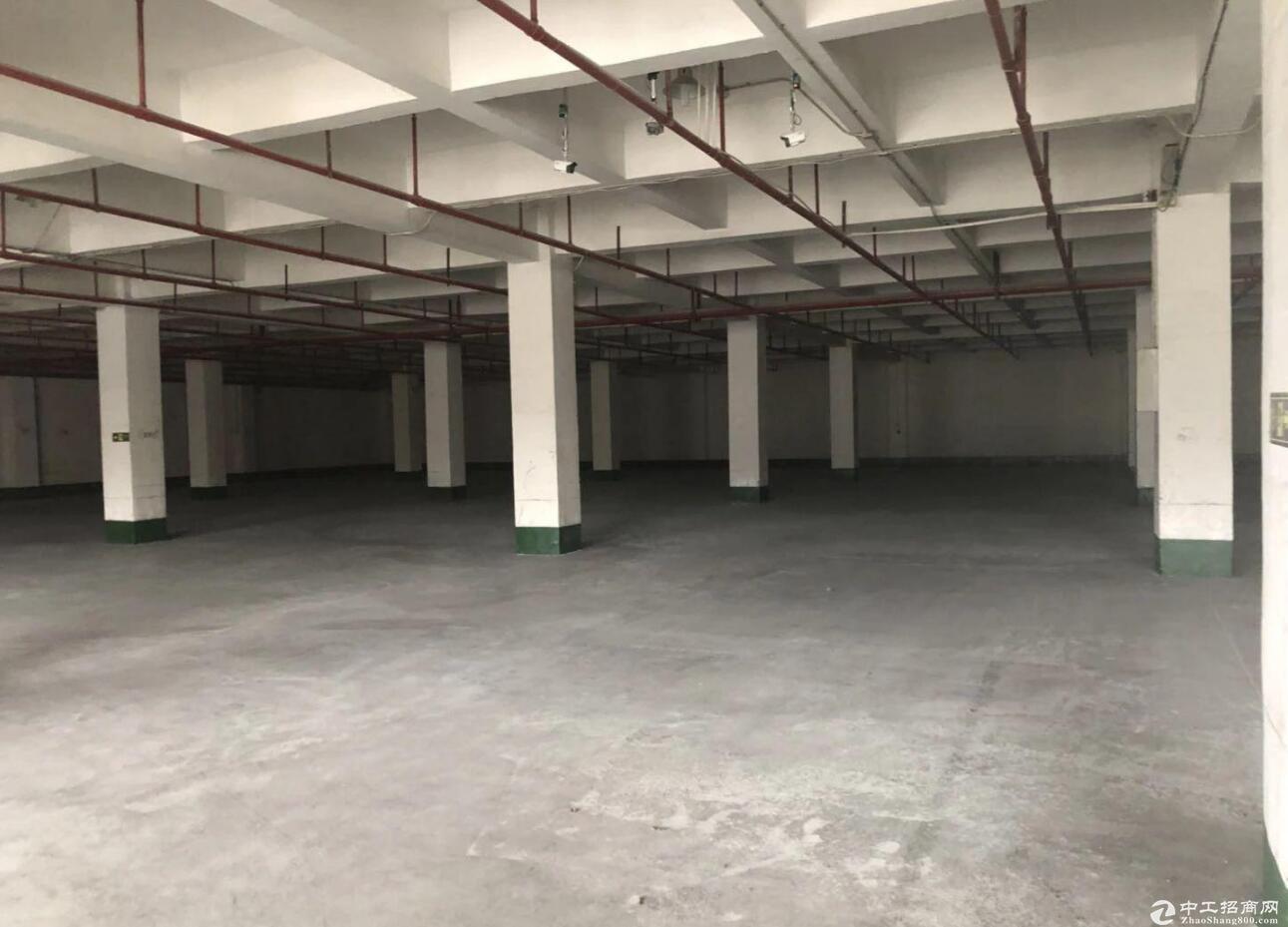 空港标准小面积厂房出租1000平米