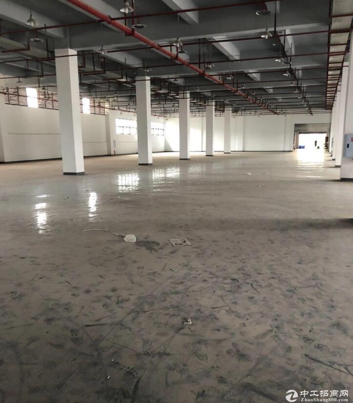 渝北 空港工业园区1000平标准厂房出租