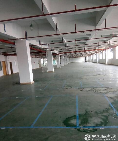 蔡家同兴工业园区厂房1600平米出租