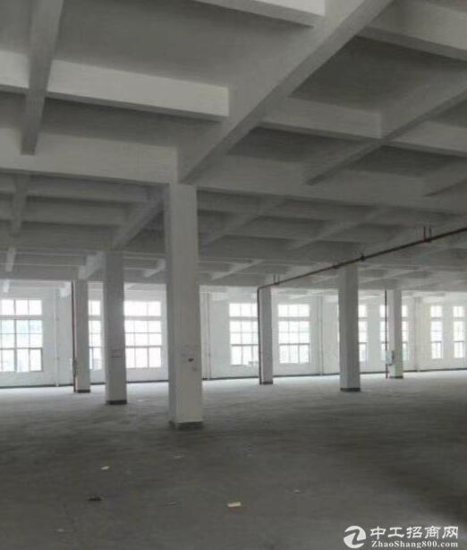 蔡家嘉德大道2100平米框架厂房出租