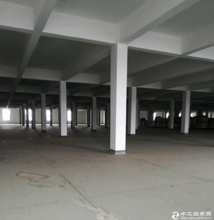 蔡家工业园区6000平米厂房出租