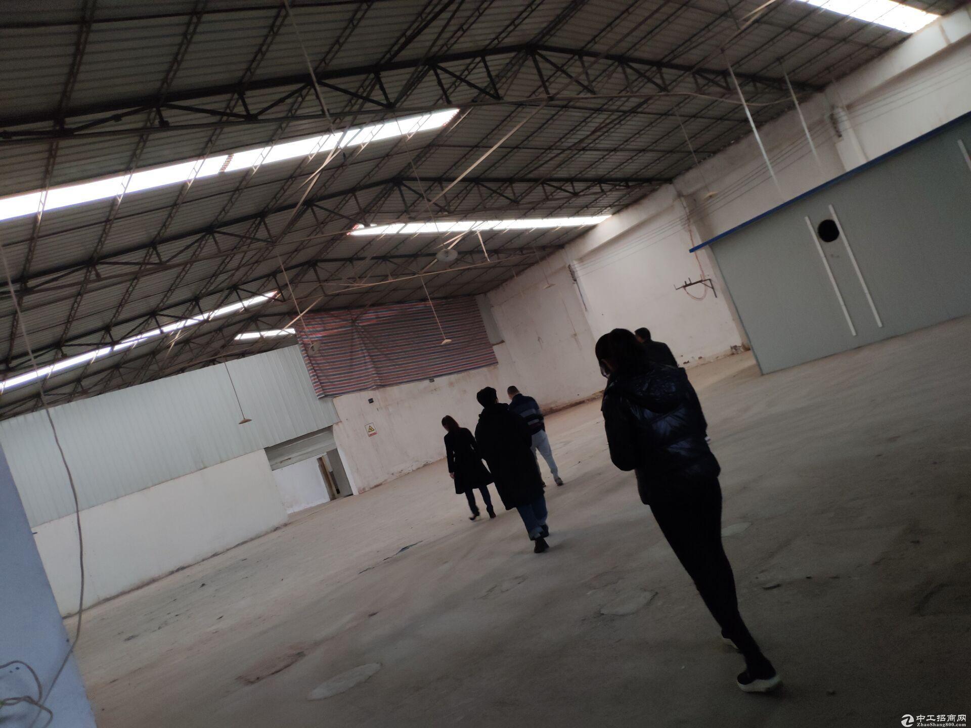 非中介)温江共耕独门独户大型厂房仓库-图2