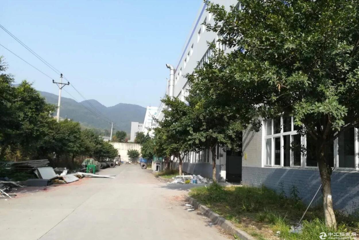 出租园区6000平纯底楼,办公住宿齐全。有产权