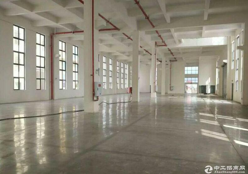 独栋单层厂房 低首付 高品质 11米挑高送院子