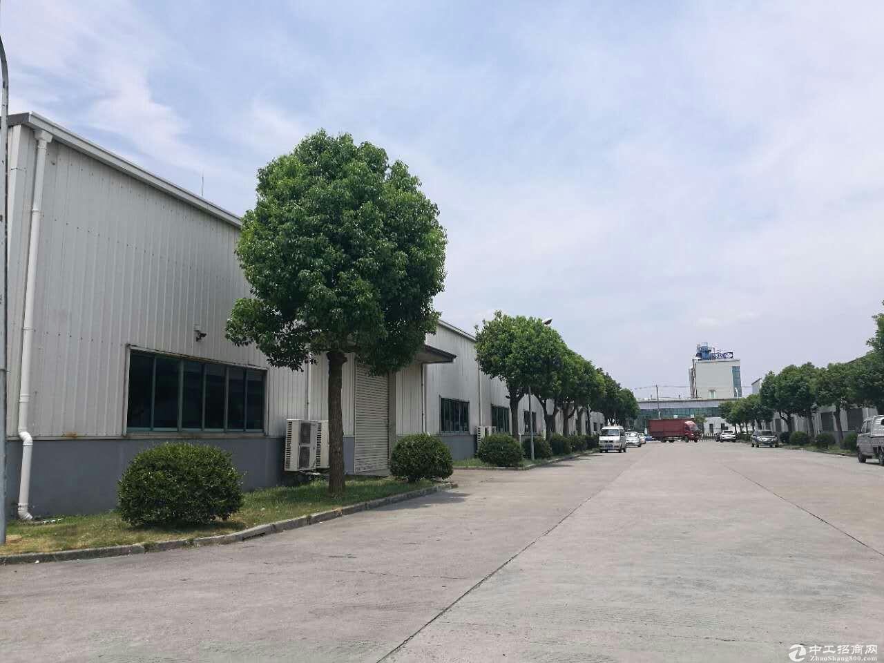 松江独栋火车头式厂房3000平米可分割位置佳-图2