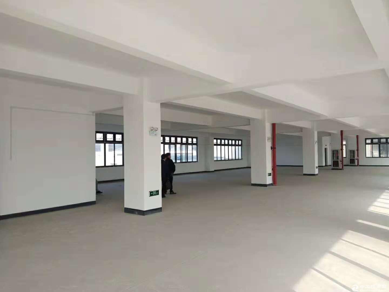 松江全新独栋4610平米厂房视野位置佳可办环评