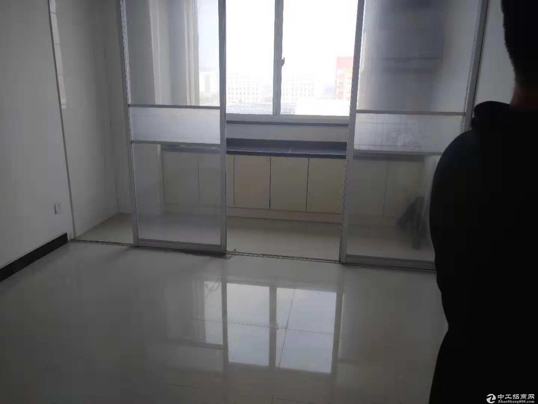 松江新城独院全单层104板块厂房配套齐全-图4