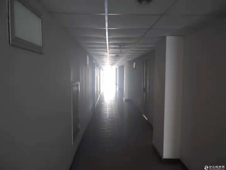 松江新城独院全单层104板块厂房配套齐全-图5