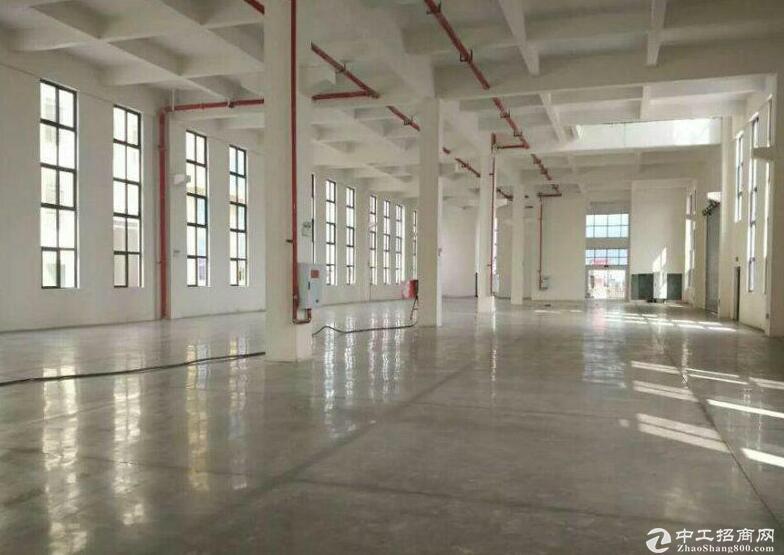 独栋单层厂房  高品质 11米挑高送院子
