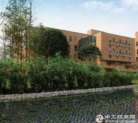 两江新区 22000万方标准独栋厂房租售 可分租
