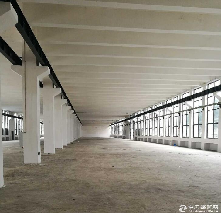 美每家14000方单层钢结构,12000方框架厂房仓库