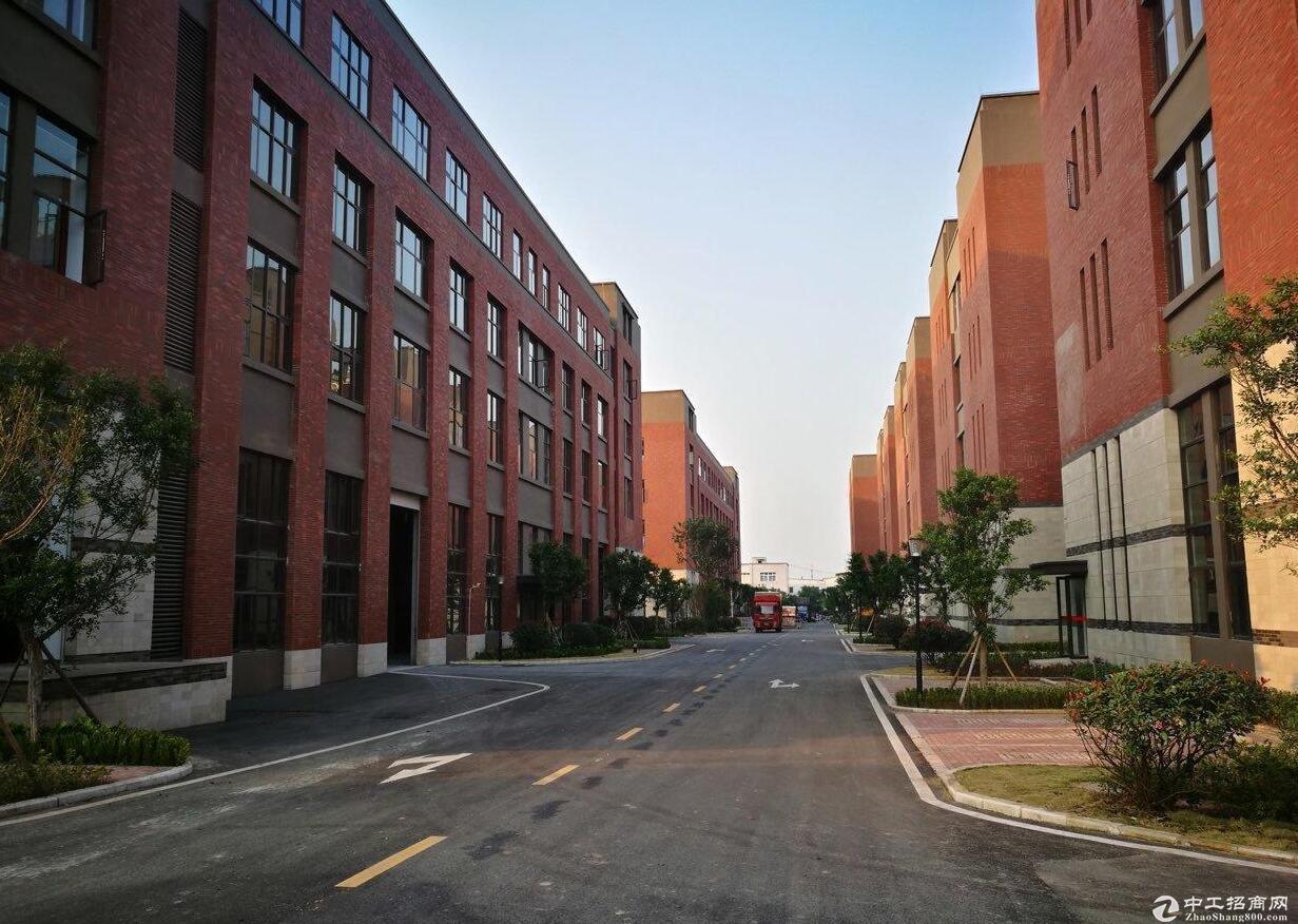 九龙坡标准厂房出租 厂房6000平米出租
