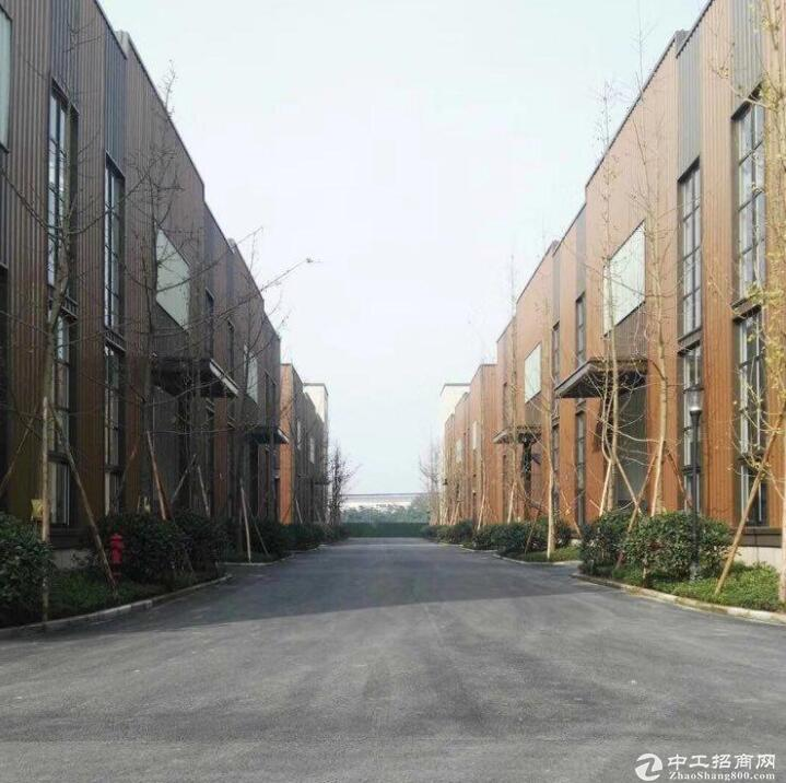 九龙坡 标准厂房 可租可售 政策多多