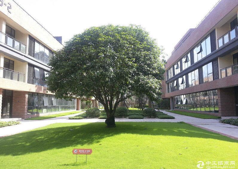 租售《标准厂房900至1500平米》钢混框架结构