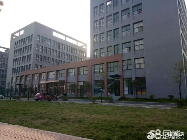 岳麓区500-7000平米任选面积办公厂房 以及独栋-图4